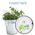 Mini herb pail.png