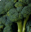 Broccoli .png