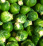 Brussels Sprouts .png